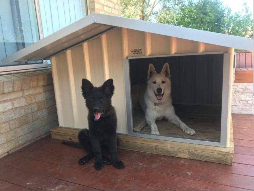 1.2m x 1.2m kennel in New Look Shed City display area